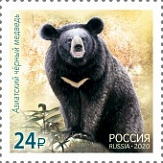 № 2718. In the framework of a joint issue of the Russian Federation and the Republic of Korea, stamps dedicated to national representatives of fauna. Asiatic black bear
