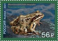 № 2734. Fauna of Russia series. Frogs. Asiatic grass frog