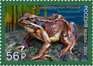 № 2733. Fauna of Russia series. Frogs. Iranian long-legged