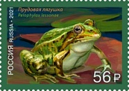 № 2732. Fauna of Russia series. Frogs. Pool frog